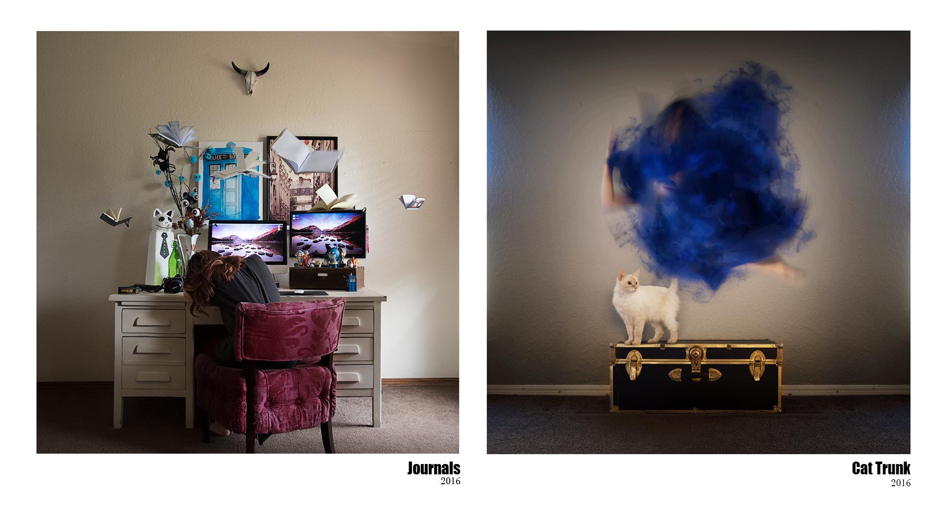 journal&cattrunk